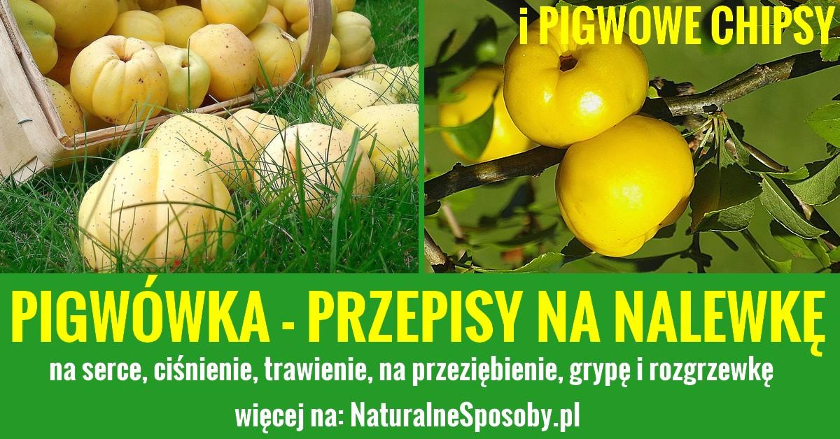 naturalnesposoby.pl-pigwowka-przepis