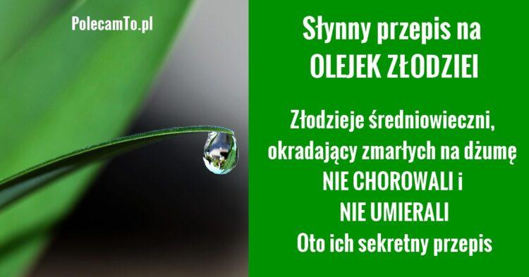 PolecamTo.pl-olejek-zlodziei-jak-zrobic-przepis