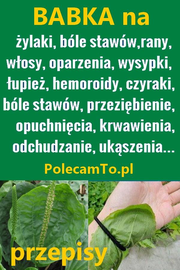 PolecamTo.pl-babka-lancetowata-przepisy