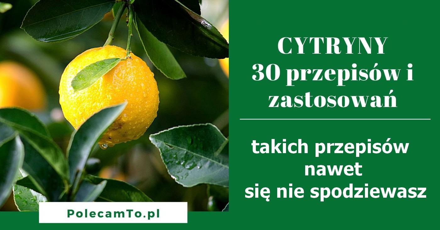 PolecamTo.pl-cytryny-przepisy
